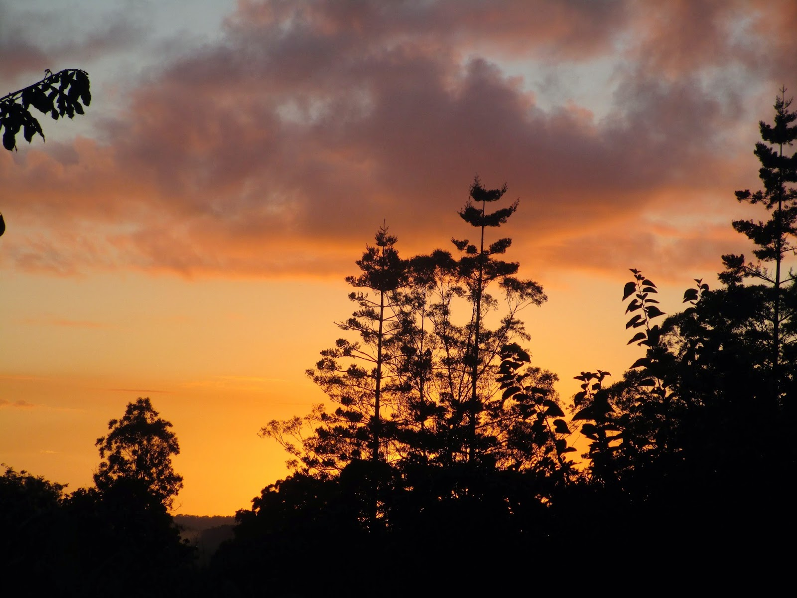 Sunrise at PRI Sunshine Coast