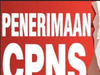 Lowongan Kerja CPNS Guru 2017-2018