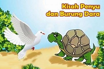Dongeng Fabel Seekor Penyu Dan Burung Dara Cerita Dongeng Indonesia