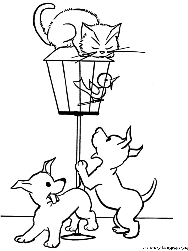 Realistic Coloring Pages Of Cats | Realistic Coloring Pages