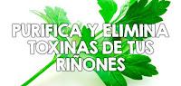 https://steviaven.blogspot.com/2017/11/como-limpiar-toxinas-rinones-plantas-medicinales.html