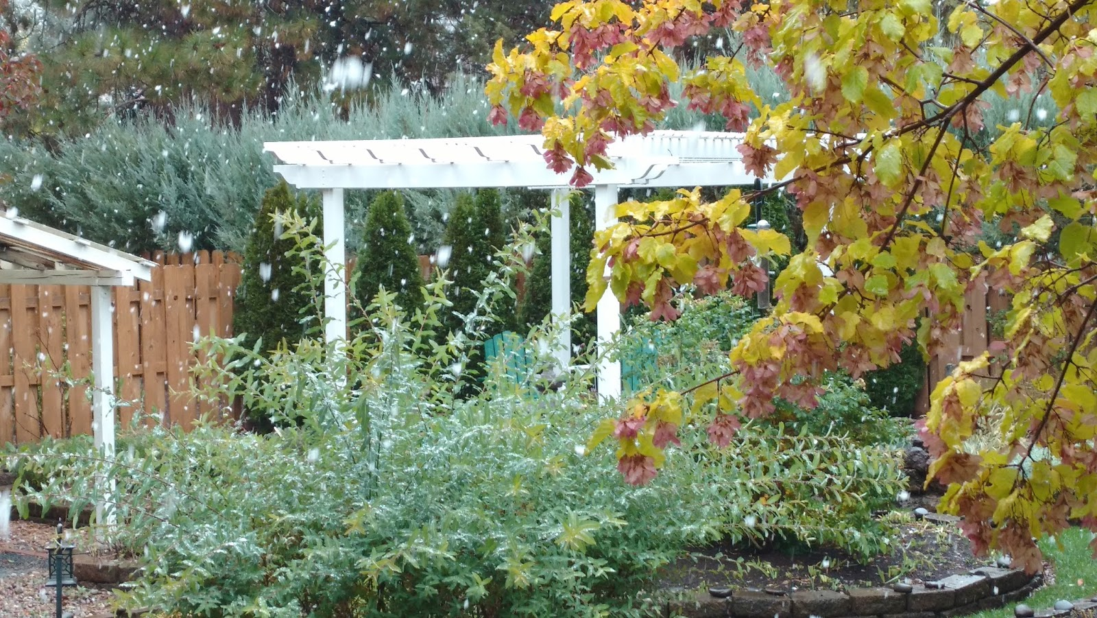 Tending Our Gardens: October: Snow, completed projects and gorgeous
