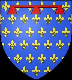 Casas de Anjou