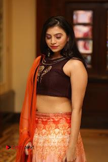 Actress Priyanka Pictures in Half Saree at Apartment Movie Audio Launch  0041