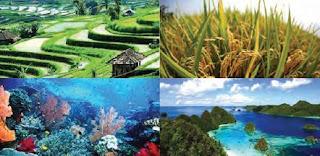 Batas Wilayah Negara Kesatuan Republik Indonesia
