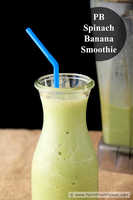 Recipe for an allergy-friendly smoothie. Creamy, satisfying and green, this peanut butter, spinach and banana smoothie has it all.