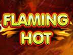 slots flaming hot