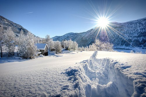 Beautiful Snowflake In The Sunlight: Oh, By The Way...: Sun And Snow