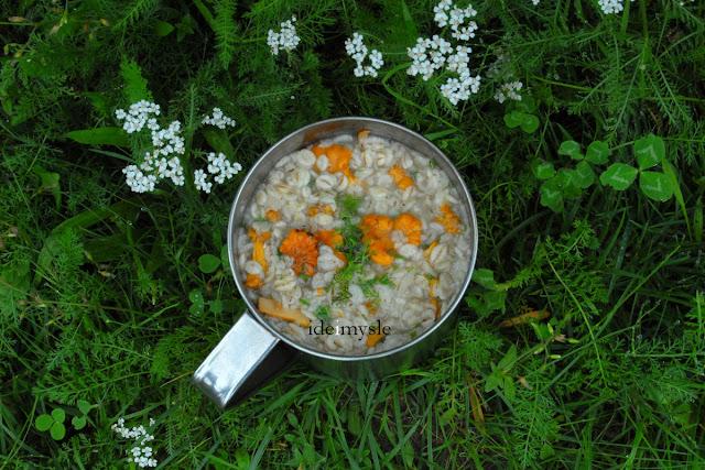kurki przepis, pieprznik jadalny, chanterelle recipe, krwawnik pospolity, dzikie przyprawy, achillea millefolium recipe