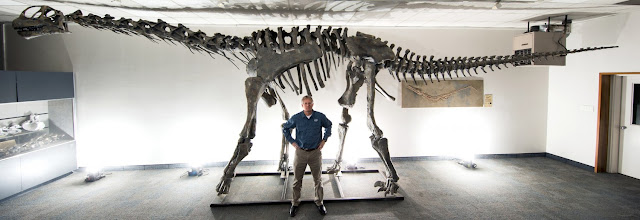 Moabosaurus discovered in Utah's 'gold mine'