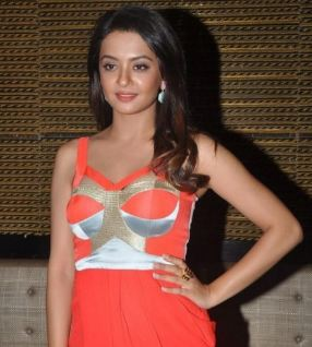 Surveen Chawla Family Husband Son Daughter Father Mother Marriage Photos Biography Profile.