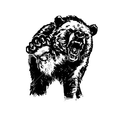Angry Bear Drawing | Funny Collection World