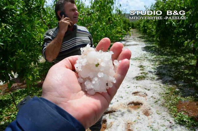 Γ. Μανιάτης: Άμεση αντιμετώπιση & εκτίμηση ζημιών από το χαλάζι στην Αργολίδα