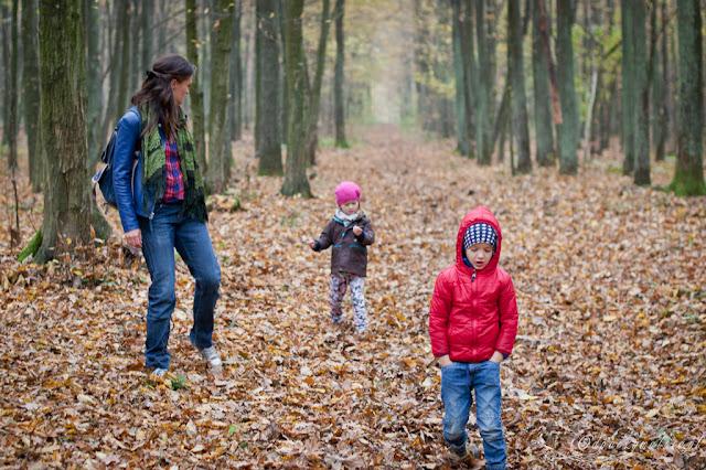 spacer po lesie, spacer z dziećmi, jesień