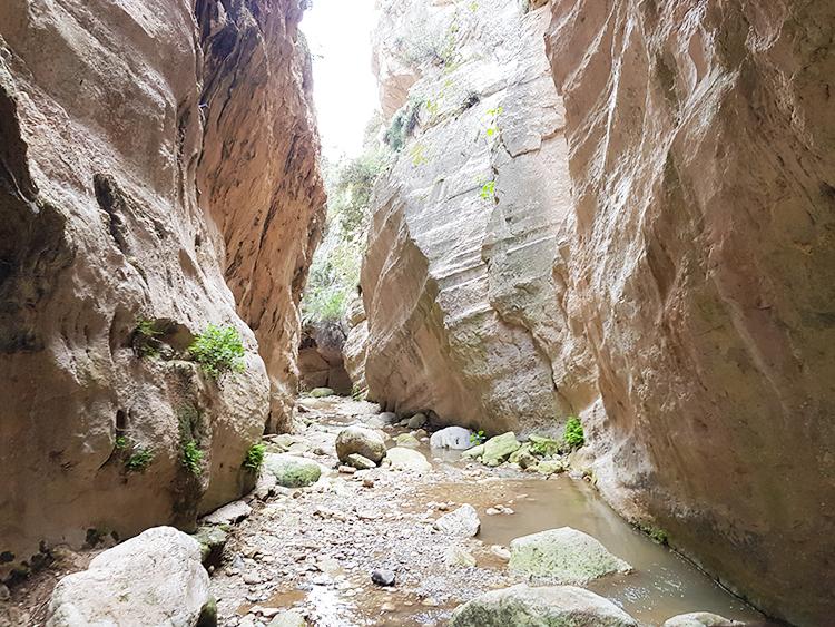 Dans les gorges d'Avakas