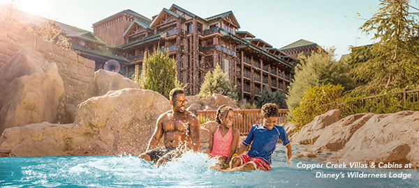 Dvc sweepstakes rules and regulations
