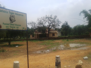 Forest Rest House at Sariska Tiger Reserve, Rajsthan