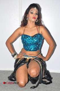 Actress Nisha Latest Pictures at Hyper Movie Audio Launch (Set 1)  0110.JPG