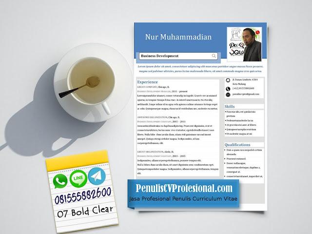 Desain CV Profesional