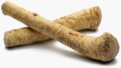The plant is known for its white taproot that is referred to as horseradish Horseradish Plant - Health Benefits Of Horseradish
