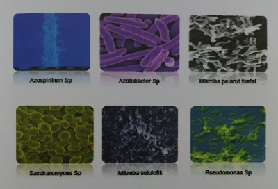 Mikroba Maxigrow