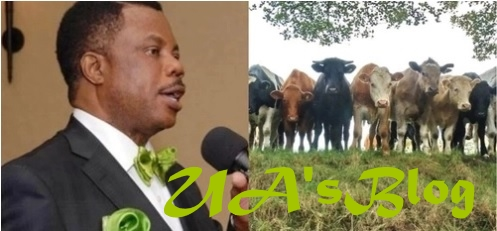 Cattle breeders to sign an MoU with state government over tax payment modalities