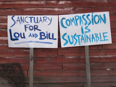 Sanctuary for Lou and Bill | Compassion is sustainable