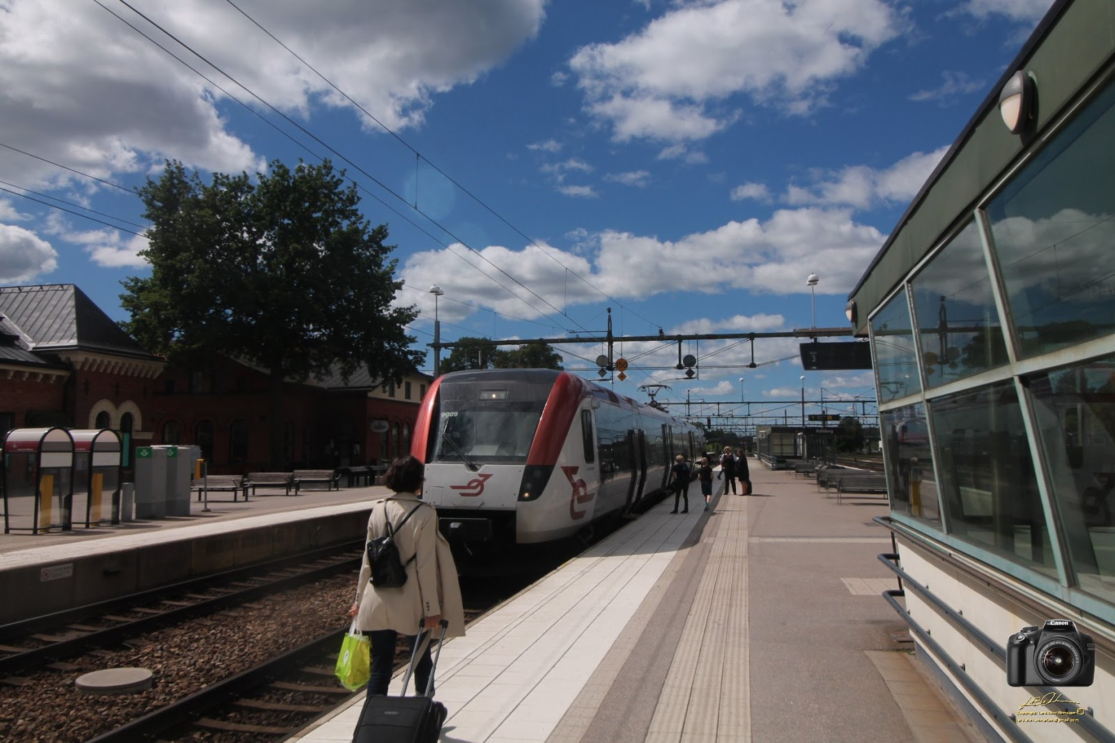 gå i tåg