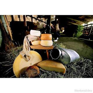 Formandi – Sapori e formaggi di montagna 16-17 dicembre Sutrio (UD)