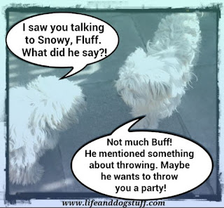 Buffy and Fluffy talking.