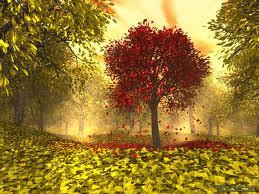 Trees of Autumn