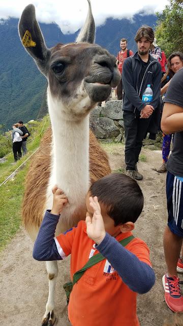 machu picchu viajar com crianças no peru cusco