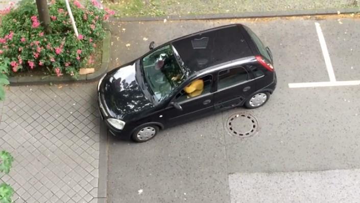 Video Seorang Wanita Parkir Mobil Bikin Ngakak Yang Lihat