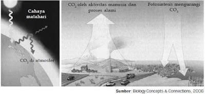 Dampak Aktivitas Manusia Terhadap Perubahan Lingkungan Alam yang Disebabkan oleh Pencemaran Udara, Pencemaran Air, dan Pencemaran Tanah