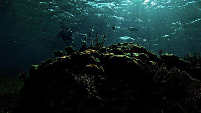 Первый подводный отель появится в акватории Мальдив