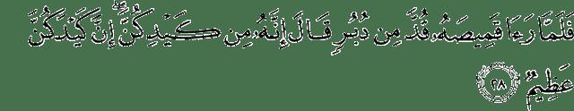 Surah Yusuf Ayat 28