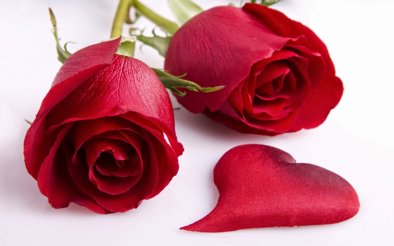 Happy-Valentines-Day-Red-Rose-HD-Images