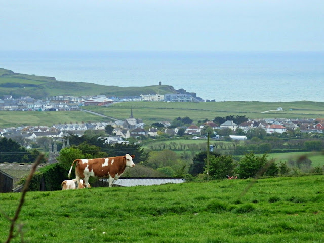 Countryside view to the sea from POughill, Cornwall