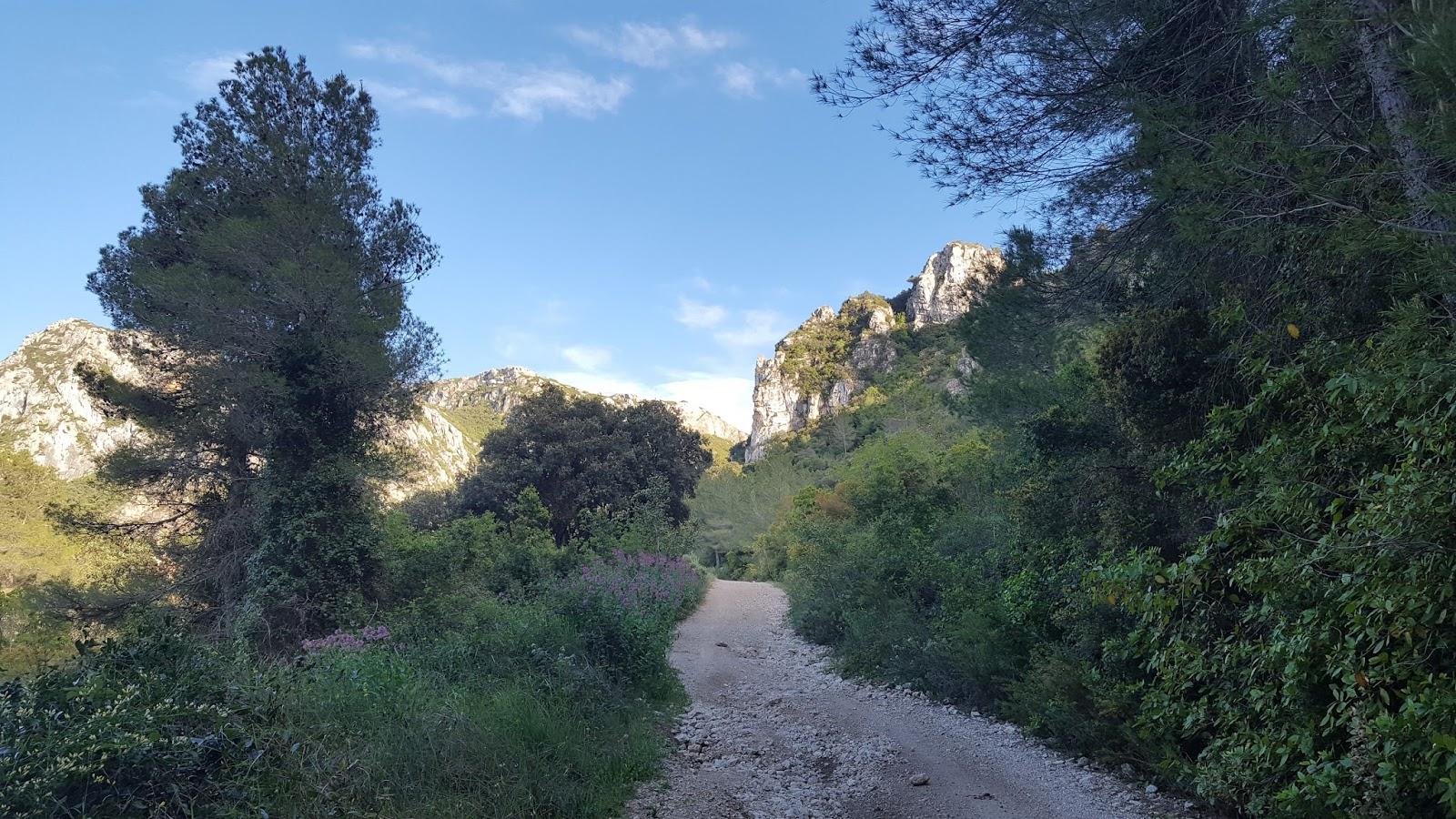 Cycling in Valencia - Climb to Buixcarró, Pla de Corrals