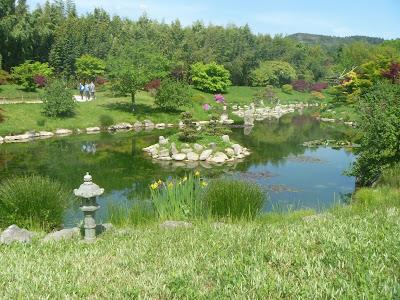 Hablemos de jardines for El jardin de los dragones