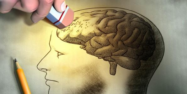 Aliments utiles pour la mémoire