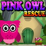Games4King Pink Owl Rescue Walkthrough