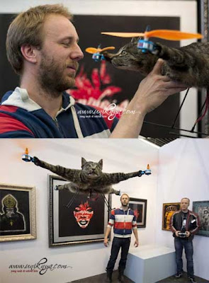 Mayat Kucing Dijadikan Helikopter - Sekitar Dunia Unik