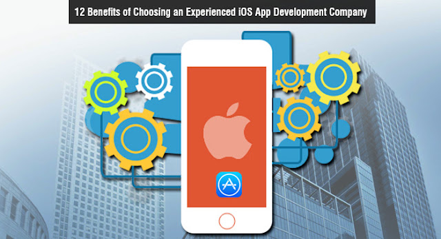 12 Benefits of Choosing an Experienced iOS App Development Company