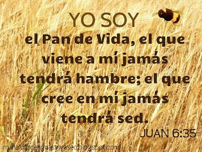 YO SOY EL PAN DE VIDA JUAN 6:35