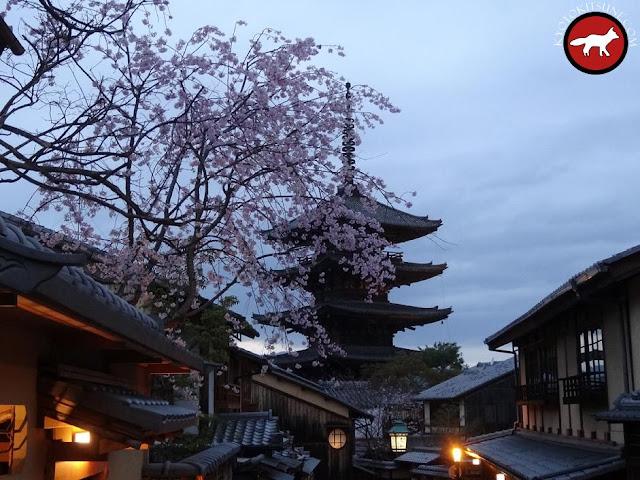 Pagode de Kyoto de nuit avec sakura