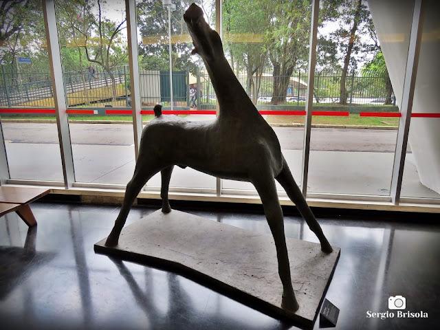 Close-up da Escultura Grande Cavalo - MAC-USP - Vila Mariana - São Paulo