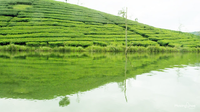 Things to do vagamon lake