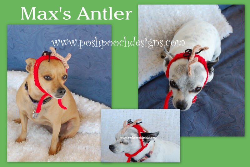 Dog Antler Hat Knitting Pattern : Posh Pooch Designs Dog Clothes: Maxs Antler Crochet Pattern From the Grinch