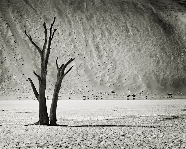 Dead Vlei (Namíbia)